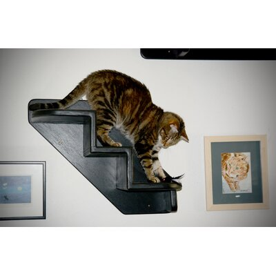 3 Step Pet Stair Color: Espresso