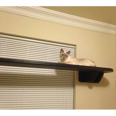 8 Window Cat Perch Size: 8 H x 61 W x 18 D, Color: Espresso / Light Brown