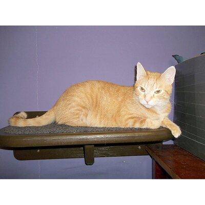 8 Cat Perch Color: Espresso / Gray, Size: 8 H x 18 W x 12 D