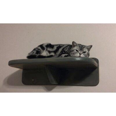8 Cat Perch Size: 8 H x 18 W x 12 D, Color: Espresso