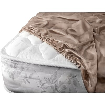 Aus Vio Mulberry Silk Fitted Sheet Size: Queen, Color: Pebble
