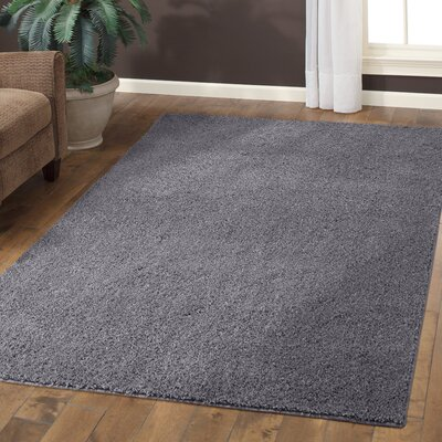 Aviles Grey Flannel Area Rug Rug Size: 26 x 310