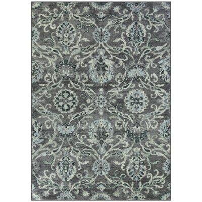 Kaycee Charcoal/Gray Area Rug Rug Size: 5 x 7