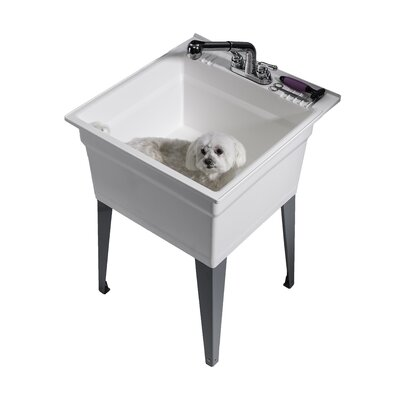 Heavy Duty 22.75 x 25.25 Freestanding Laundry Utility Sink with Faucet Sink Finish: White
