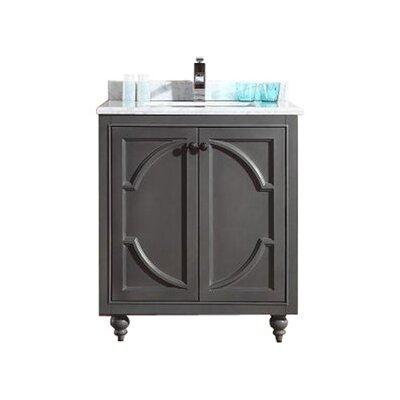 Odyssey 30 Single Bathroom Vanity Base Finish: Gray