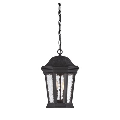 Chestnut Run 2-Light Outdoor Hanging Lantern