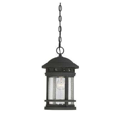 Grazierville 1-Light Outdoor Hanging Lantern