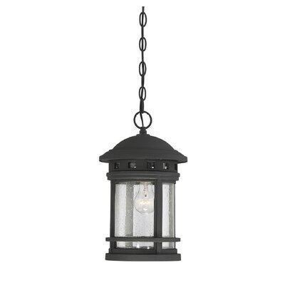 Grazierville 1-Light Outdoor Hanging Lantern