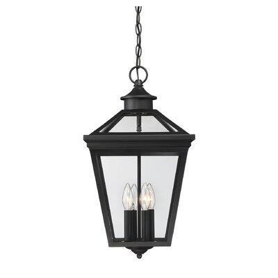 Coleg 4-Light Outdoor Hanging Lantern
