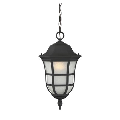 Heuser 1-Light Outdoor Hanging Lantern