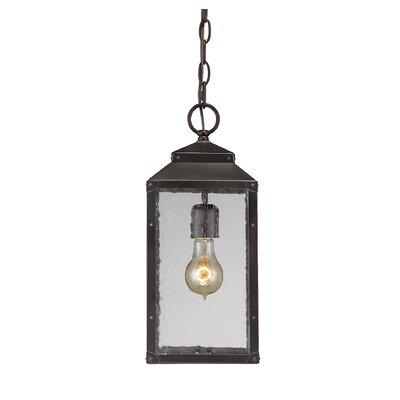 Brayden Studio Knushevia 1-Light Outdoor Hanging Lantern