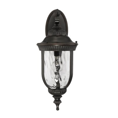 Brannon Black and Gold Outdoor Wall lantern Size: 20.25 H x 8 W