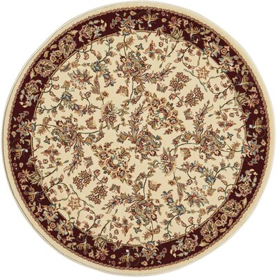 Mazee Ivory Area Rug Rug Size: Runner 22 x 76