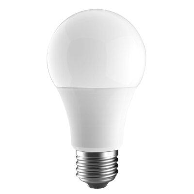 60W A19 LED Light Bulb