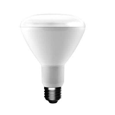 75W E26 LED Light Bulb