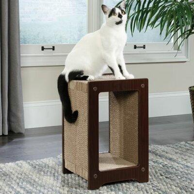 19 Cat Scratching Board