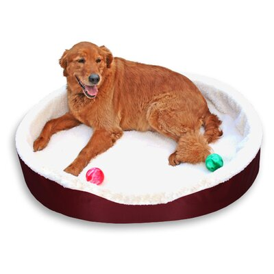 Dog Bolster Size: (Small) 20 W  x 16 D, Color: Burgundy