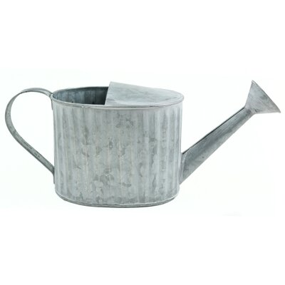 Giana Watering Can