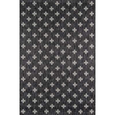 Umbria Charcoal Indoor/Outdoor Area Rug Rug Size: Rectangle 53 x 76