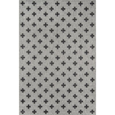 Umbria Gray Indoor/Outdoor Area Rug Rug Size: Rectangle 53 x 76