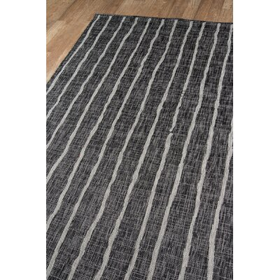 Sicily Charcoal Indoor/Outdoor Area Rug Rug Size: Rectangle 53 x 76