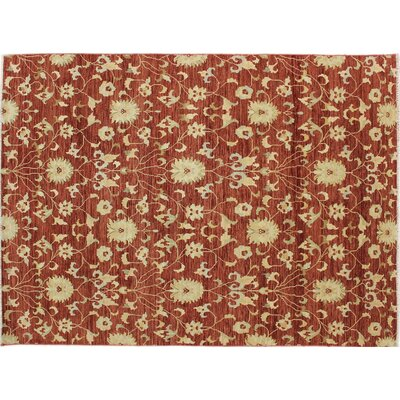 Oushak Kaveh Hand-Knotted Rust Area Rug