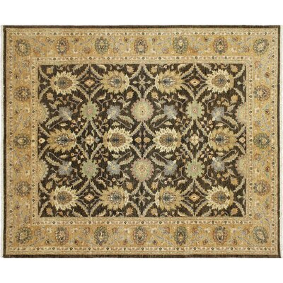 Leann Hand-Knotted Rectangle Chocolate Area Rug