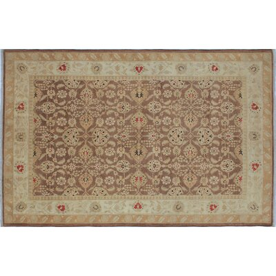 Pak-Persian Italy Hand Knotted Wool Chocolate Area Rug Rug Size: Rectangle 62 x 95