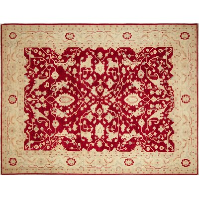 Leann Hand-Knotted Medallion Red Area Rug