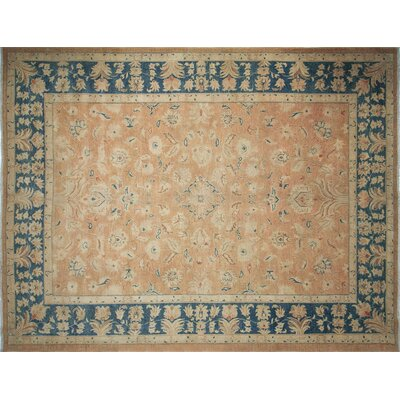 One-of-a-Kind Leann Hand-Knotted Beige Area Rug