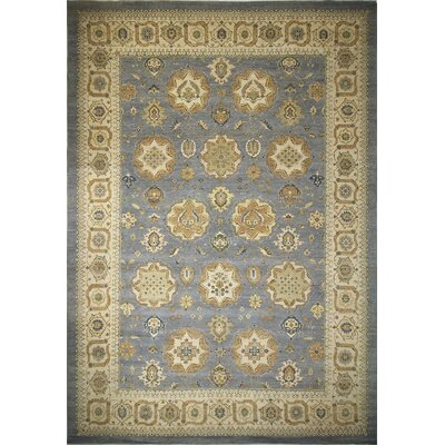 Leann Hand-Knotted Oriental Rectangle Gray Area Rug