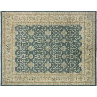 Leann Hand-Knotted Rectangle Blue/Gray Area Rug