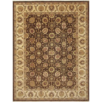 One-of-a-Kind Montague�Hand-Knotted Oriental Brown Area Rug