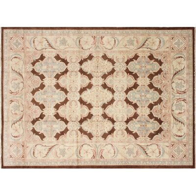 Leann Hand-Knotted Rectangle Chocolate/Brown Area Rug