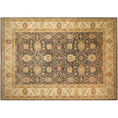 Leann Hand-Knotted Gray Wool Indoor Area Rug