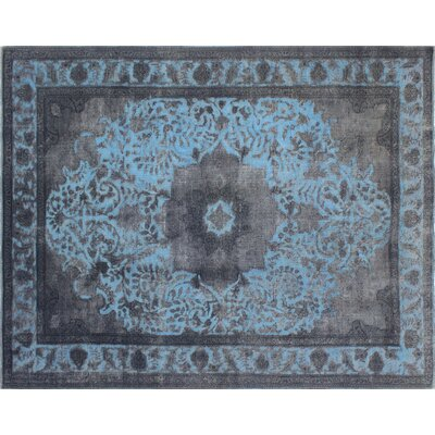 Distressed Amr Hand-Knotted Gray Area Rug