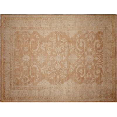 Leann Hand-Knotted Rectangle Light Brown Indoor Area Rug