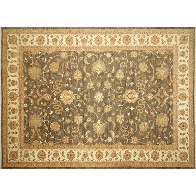 Leann Hand-Knotted Green/Gray Area Rug