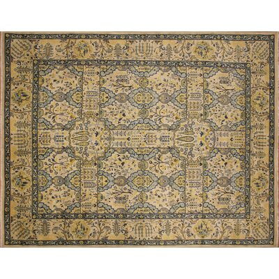 Arthen Hand-Knotted Rectangle Ivory Fringe Area Rug