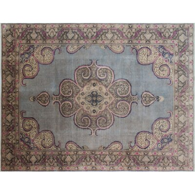 Distressed Kabir Hand-Knotted Gray/Blue Area Rug