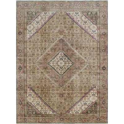 Distressed Overdyed Raqib Hand-Knotted Beige Area Rug