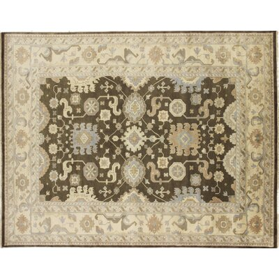 Bellview Oriental Hand-Knotted Brown Area Rug
