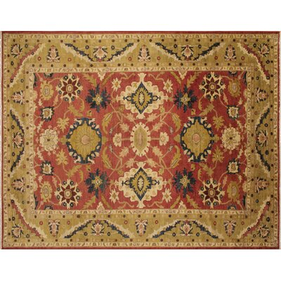 Leann Hand-Knotted Rust Indoor Area Rug