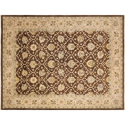 Leann Hand-Knotted Rectangle Brown Area Rug