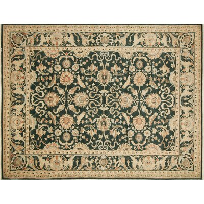 Leann Hand-Knotted Oriental Green Indoor Area Rug