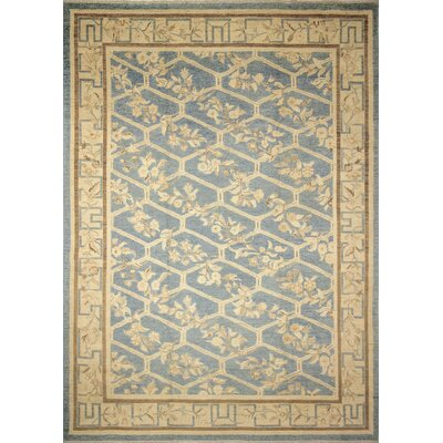 Leann Hand-Knotted Oriental Rectangle Blue Area Rug