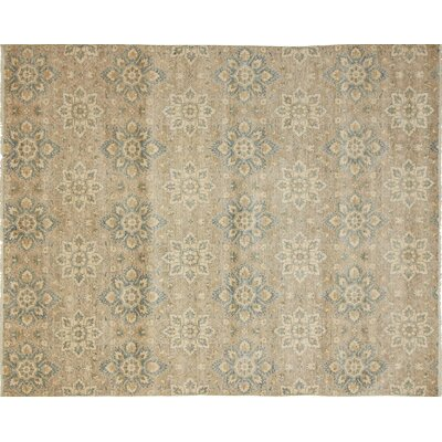 One-of-a-Kind Leann Hand-Knotted Oriental Beige Indoor Area Rug