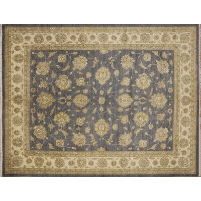 Leann Hand-Knotted Oriental Gray Wool Indoor Area Rug