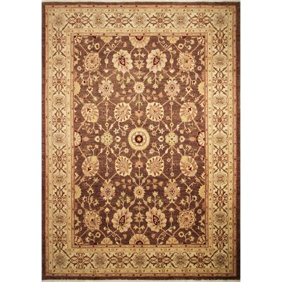One-of-a-Kind Leann Hand-Knotted Brown Wool Area Rug