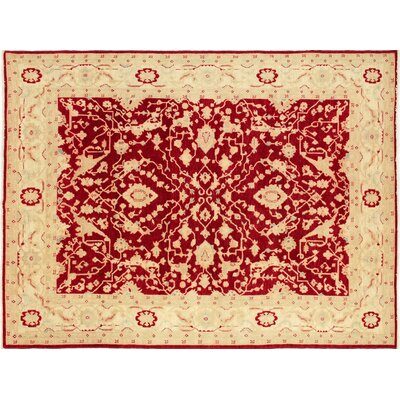 Leann Hand-Knotted Rectangle Red Area Rug